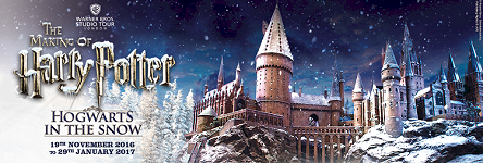 Discover the Magic of Harry Potter